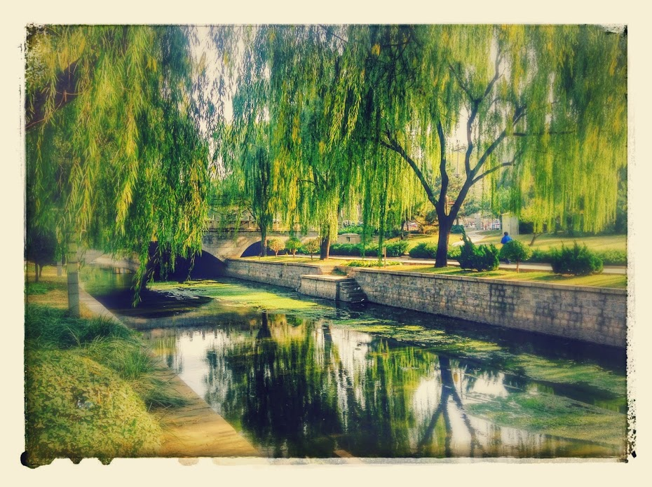 Park in the Chaoyang District of Beijing, China. (I took the photo with my iPod Touch, no filters)